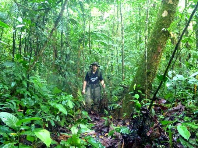 Stage de survie dans la jungle au Panama